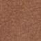 Tinkerbell bruin
